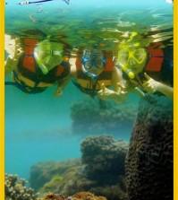 sadranan snorkeling download