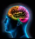 Sehatkan Otakmu dengan Cara Sederhana