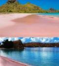 Pantai-pink-lombok